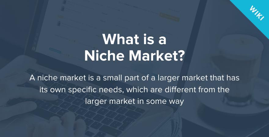 apa itu niche market