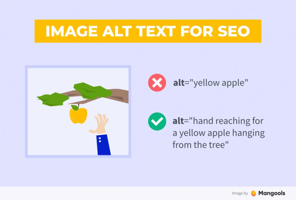 contoh penggunaan alt text seo